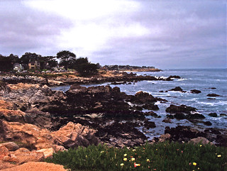 Pacific Grove Shore | by Scott Holcomb