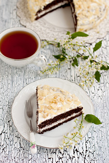Bird - Cherry Cake | by Kate Morozova