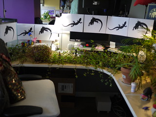"""Lizard Jungle"" Prank 