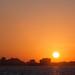 Sunset Skyline O.C.