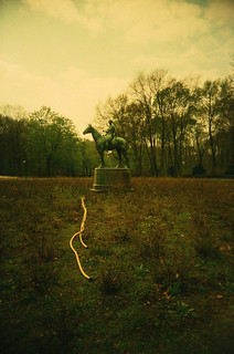 Woman on Horse with Hose in the Tiergarten | by Tara Holland
