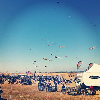 All of the kites. | by mariannemasculino