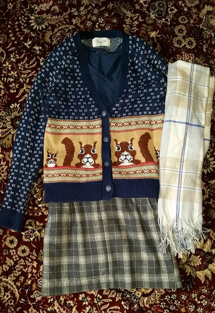 Squirrel Sweater Plaid Scarf Plaid Skirt
