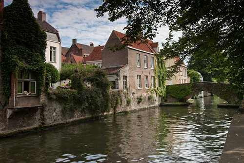 Bruges a dog on holiday? | by Roland B43