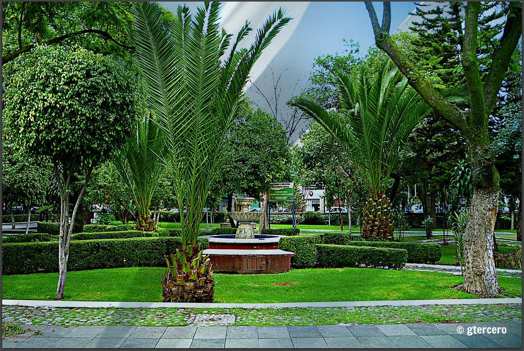 Jardines de la parroquia de santo domingo de guzman mixco for Jardines mexico