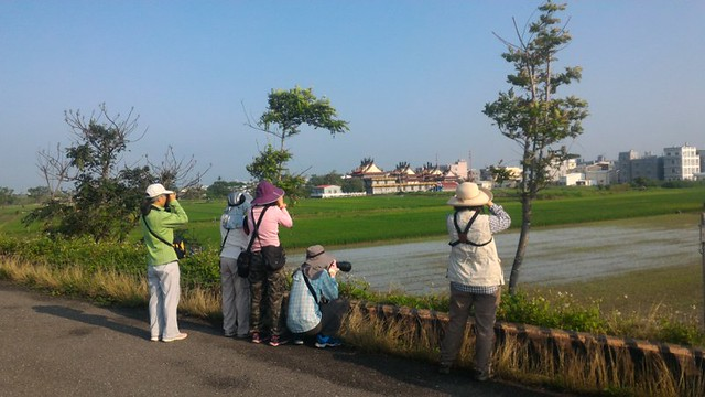 二仁溪畔的鳥類調查志工。圖片來源:台灣濕地保護聯盟提供。
