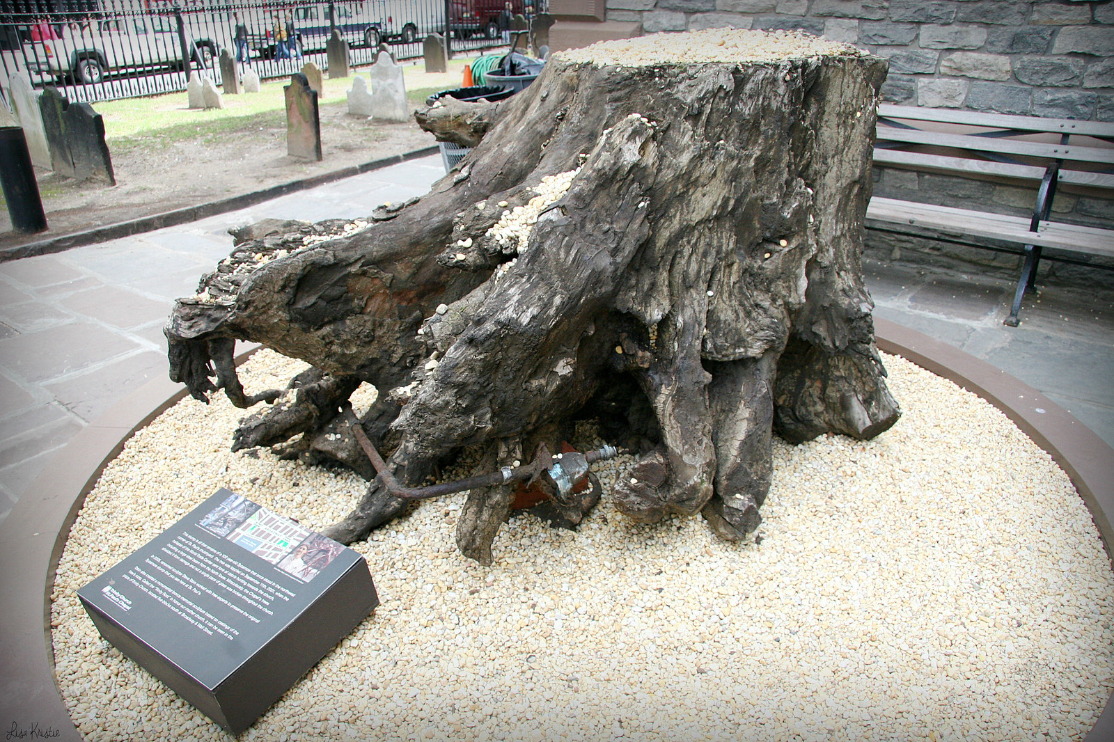 Saint Paul's Chapel sycamore tree stump roots 9/11 september 11th 2001 metal debris memorial church ground zero world trade center wtc towers