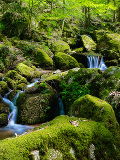 """Waterfalls"" at Sasbachwalden (Black Forest) 