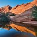 A Desert Mirror {Explored August 24th, 2012 #8}