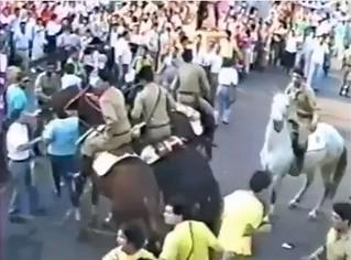 alvaro cavalos professores