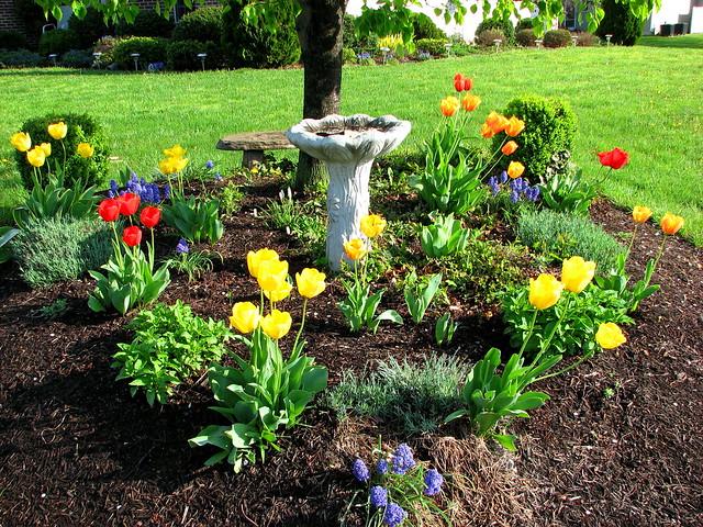 Springtime in Spring Mills