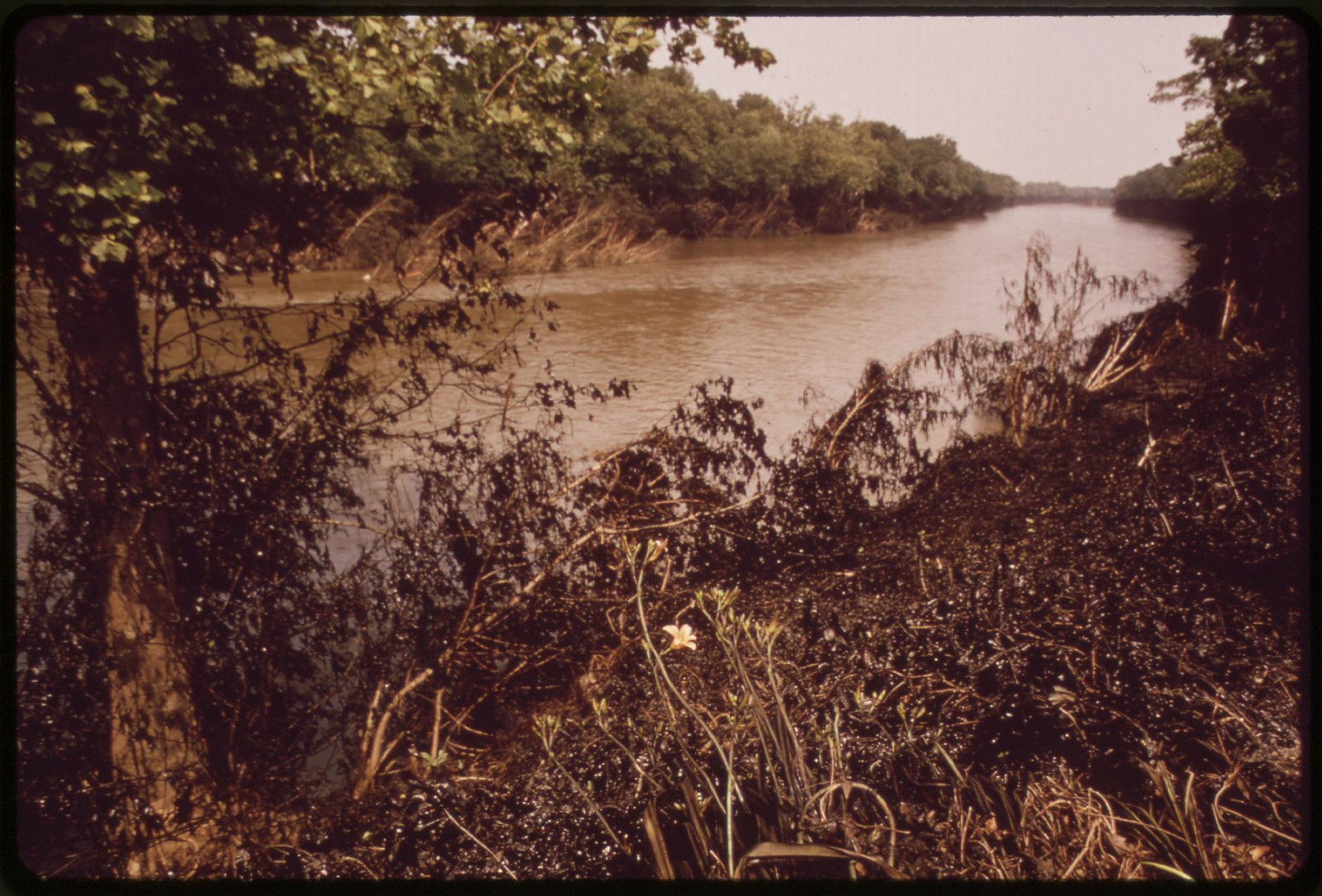 Oil Spill On Schuykill River, July 1972 | by The U.S. National Archives
