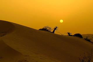 #850D5838- Sunset in the desert | by Zoemies...
