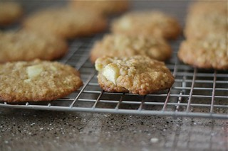 Apple Oatmeal Cookies 12 | by laurenslatest
