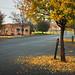 Short Street, Grenfell, New South Wales, Australia IMG_6224_Grenfell