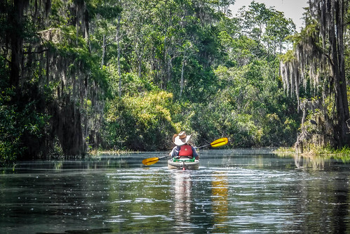 Lowcountry Unfiltered at Okefenokee-157 | by RandomConnections
