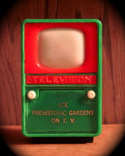 161/365 - See Prehistoric Gardens On TV | by puuikibeach