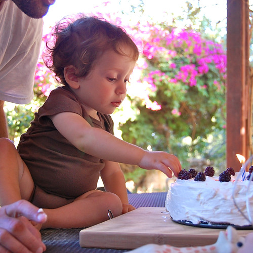 Birthday cake | by Susie Lubell