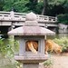Cat in the stone lantern