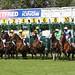Windsor Races #5
