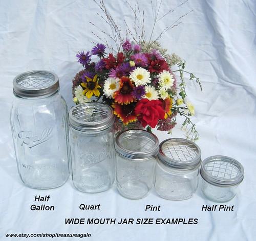 ball jar wide mouth flower frog lid lid size comparison. Black Bedroom Furniture Sets. Home Design Ideas