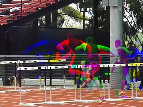 (Harris shutter effect) Grizzly Classic hurdler | by Thiophene_Guy