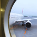 Now Boarding JAL 524 to Tokyo Haneda
