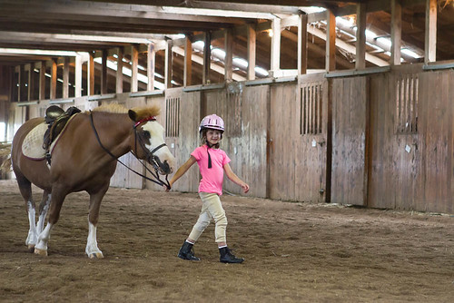 Horseback Riding Lessons Vero Beach Fl
