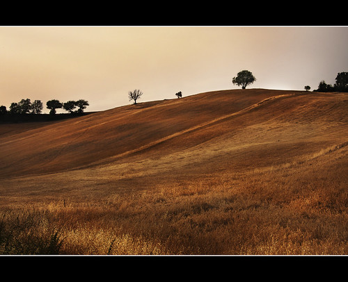 Maremma 2 | by davidevolpi (thanks for 1,5 million more views)