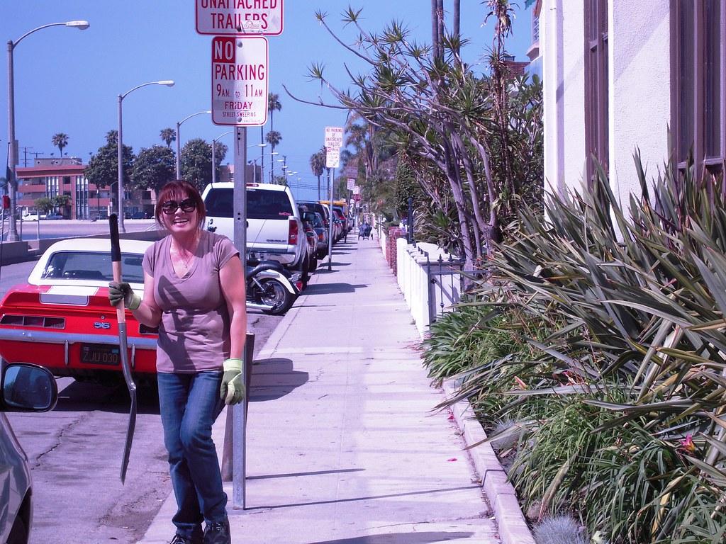 Library Jobs Long Beach Ca