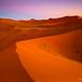 Sossus Dunes ~ Namibia