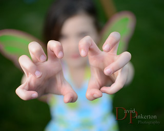 Fairy Claws | by David Pinkerton