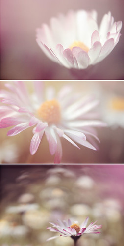 121.366 | by emma sutcliffe photography