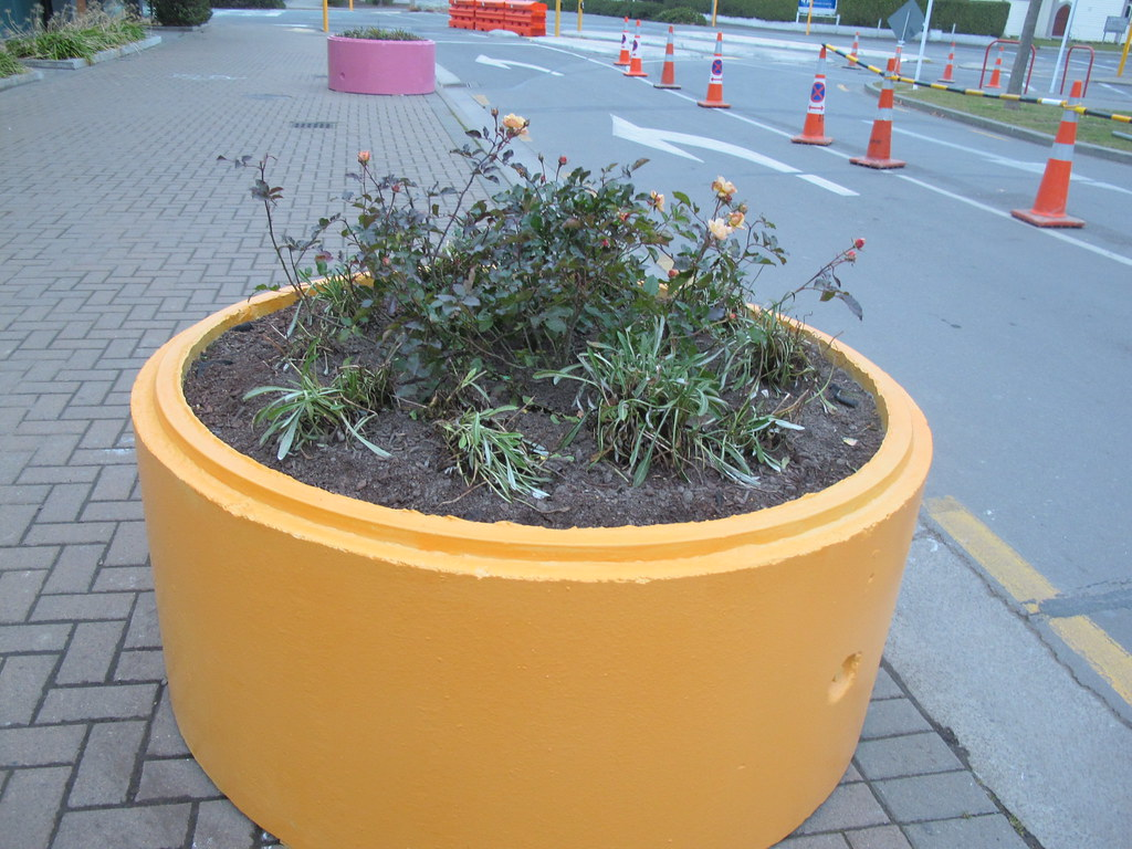 Planter on oxford terrace monday 2 july 2012 file for Oxford terrace 2
