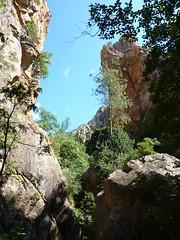 Brèche du Carciara d'Aragali : arrivée dans le canyon et traversée du ruisseau