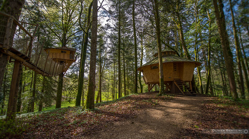 38 jura 05 2012 les cabanes dans les arbres du domaine de flickr. Black Bedroom Furniture Sets. Home Design Ideas