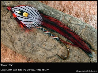 #147/365 Twizzler tied by Darren MacEachern | by pacres