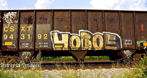 hoboe | by INTREPID IMAGES