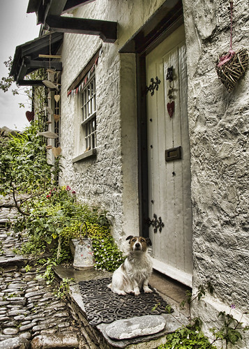 CLOVELLY VILLAGE DEVON43180612 | by RF LEWIS 495