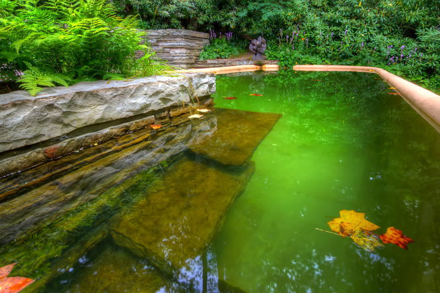 The Swiming Pool At Falling Water Pa Facebook 500px