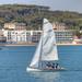 Anzio Barca a  Vela 1