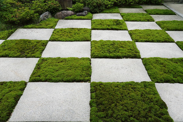 grass and tiles in chessboard, via Flickr