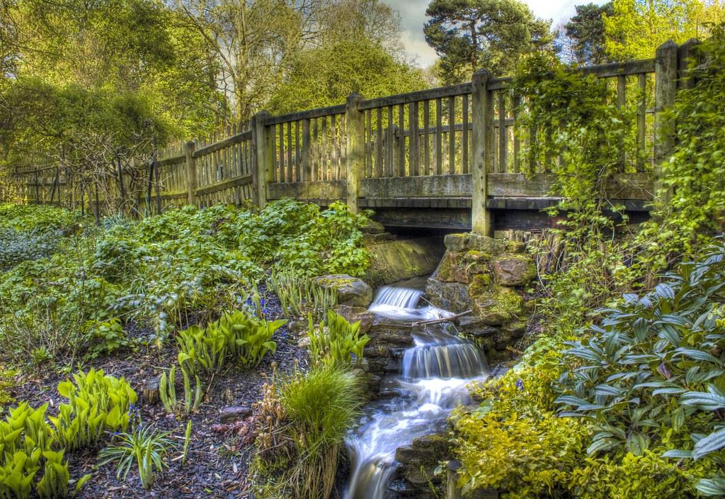 Is Heath Park Cardiff Good For Dog Walking