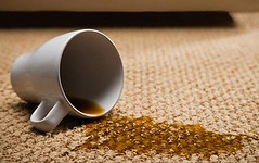 Link to The Ultimate Way to Clean Your Rental's Carpets