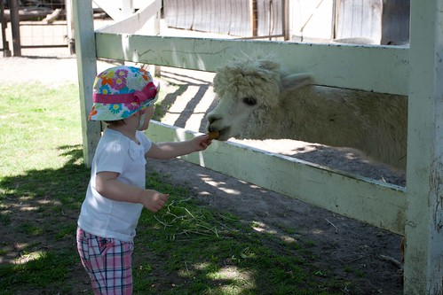 Bowmanville Zoo - May 2012 | by Aasen Ryan Family