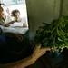 El acceso a vegetales frescos resulta difícil para la familia cubana. Crédito: Jorge Luis Baños/IPS
