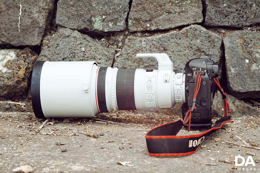 canon 300mm f2 8 taken at round 4 of d1nz 2011 2012 for ww flickr