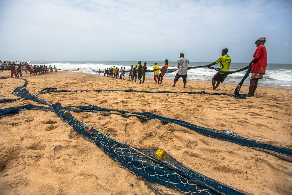 Fishermen pull the big fishing net on the beach at cape co for Big fishing net