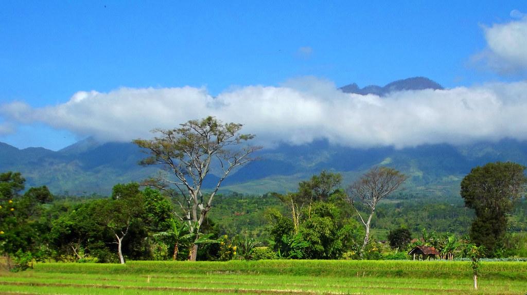 Malang Beautiful Landscapes of Malang