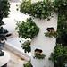 Playa Roof Garden